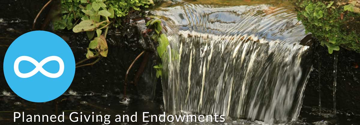 Stewardship coaching for endowment programs